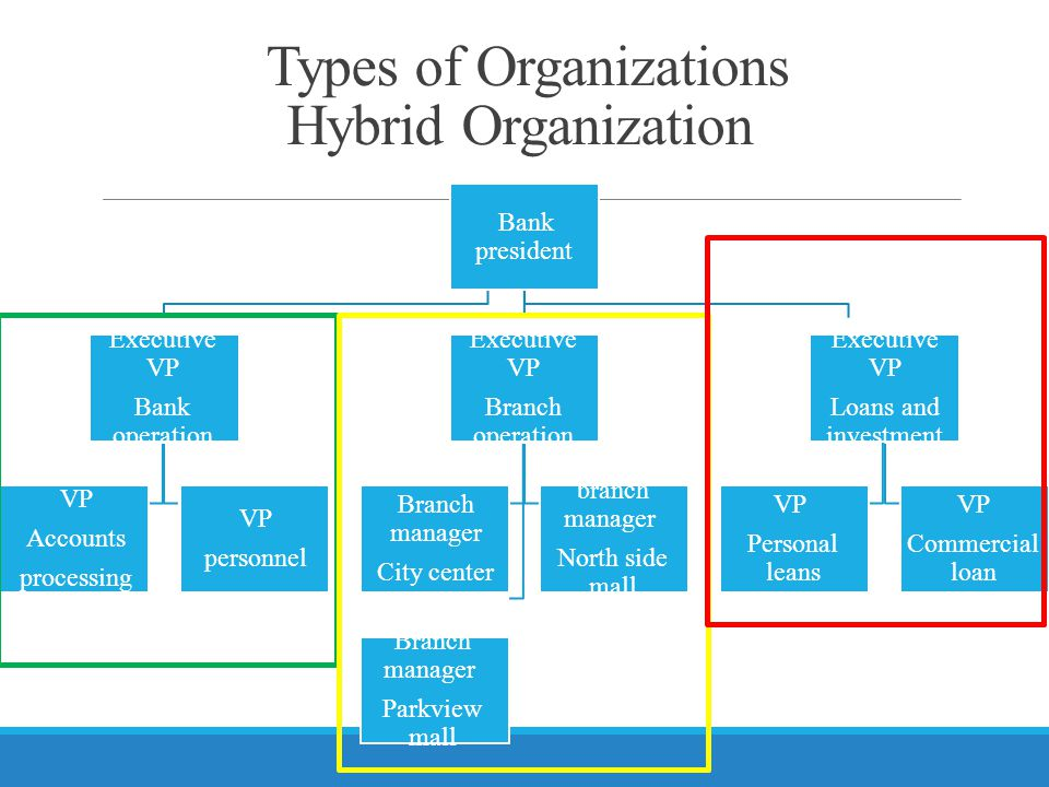 Types of Organizations Hybrid Organization Bank president Executive VP Bank operation VP Accounts processing VP personnel Executive VP Branch operation Branch manager City center branch manager North side mall Branch manager Parkview mall Executive VP Loans and investment VP Personal leans VP Commercial loan