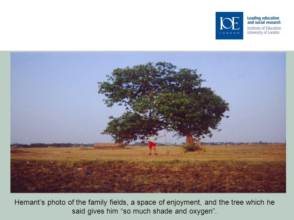 Hemant's photo of the family fields, a space of enjoyment, and the tree which he said gives him so much shade and oxygen .
