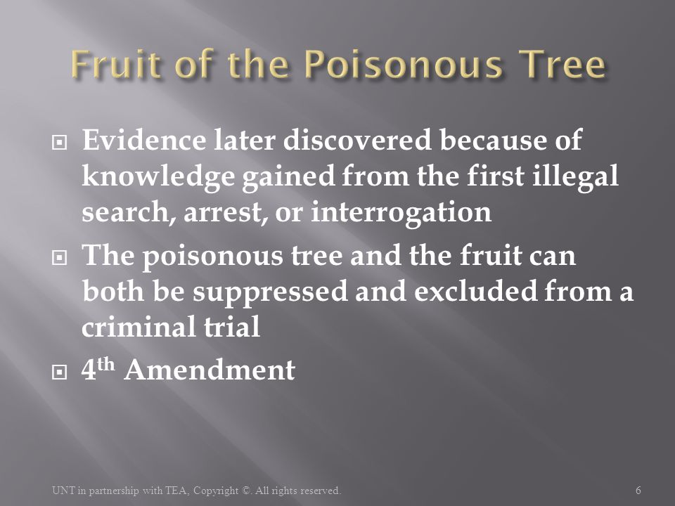 Evidence later discovered because of knowledge gained from the first illegal search, arrest, or interrogation  The poisonous tree and the fruit can
