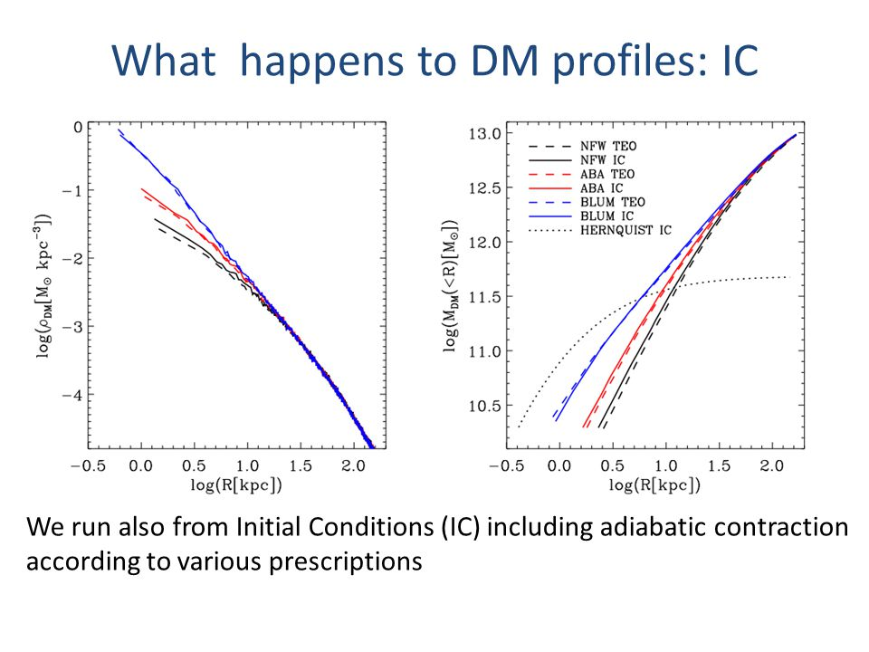 What happens to DM profiles: IC We run also from Initial Conditions (IC) including adiabatic contraction according to various prescriptions