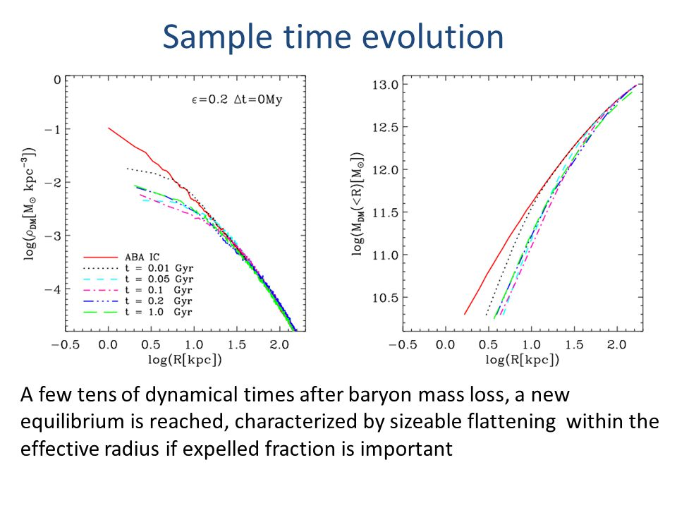 Sample time evolution A few tens of dynamical times after baryon mass loss, a new equilibrium is reached, characterized by sizeable flattening within the effective radius if expelled fraction is important