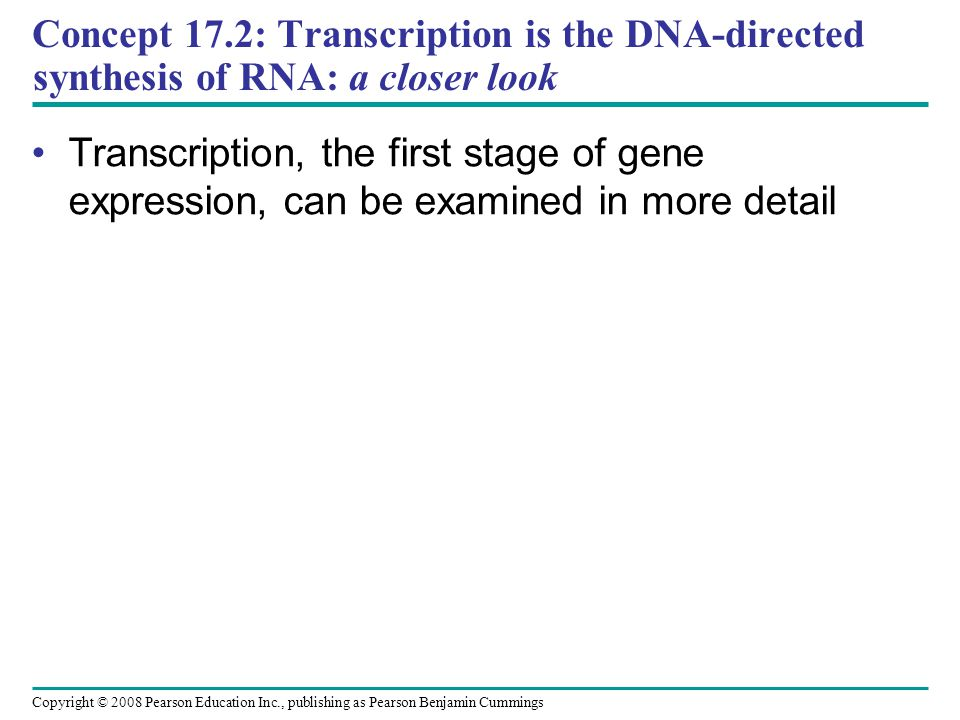 Concept 17.2: Transcription is the DNA-directed synthesis of RNA: a closer look Transcription, the first stage of gene expression, can be examined in