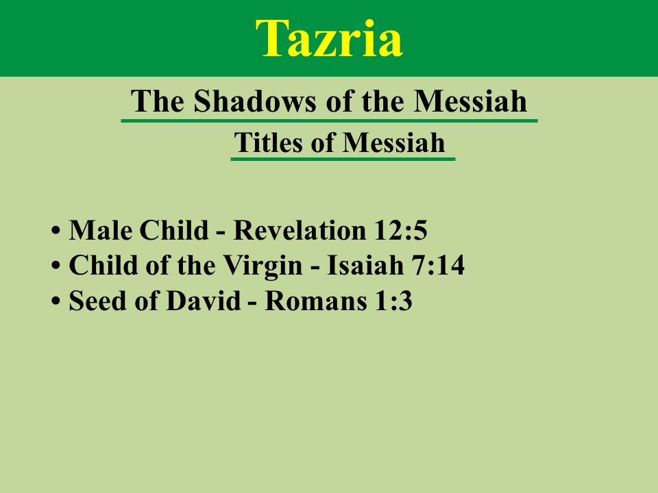 Tazria The Shadows of the Messiah Titles of Messiah Male Child - Revelation 12:5 Child of the Virgin - Isaiah 7:14 Seed of David - Romans 1:3