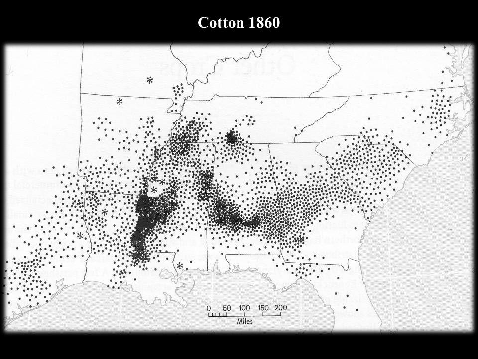 Cotton 1860