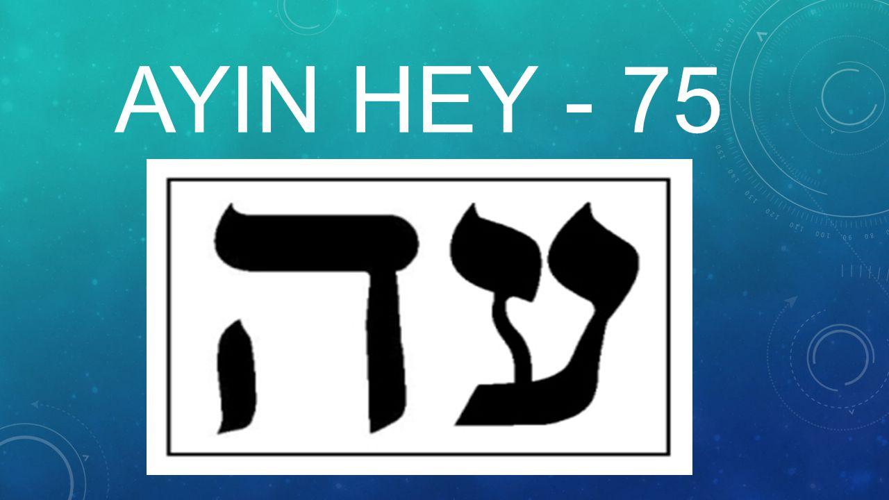 AYIN HEY - 75