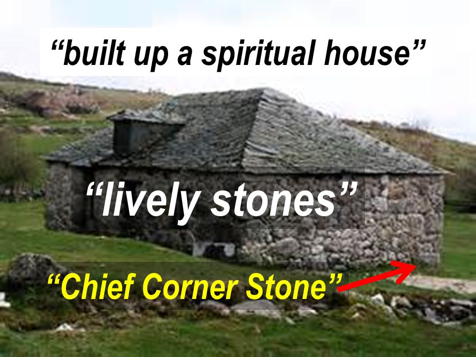lively stones built up a spiritual house Chief Corner Stone