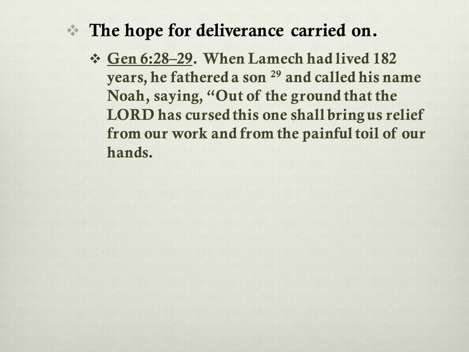  The hope for deliverance carried on.  Gen 6:28–29.