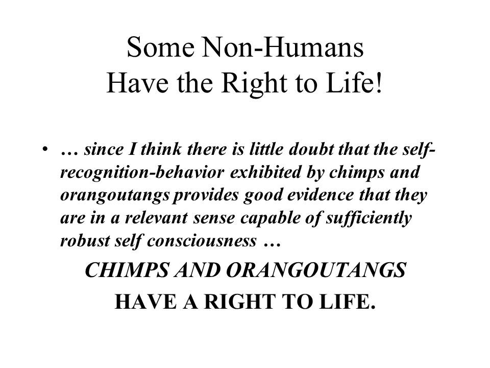 Some Non-Humans Have the Right to Life.