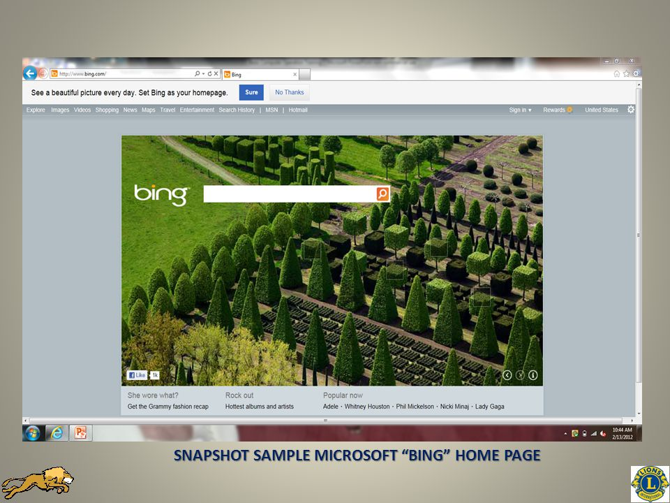 SNAPSHOT SAMPLE MICROSOFT BING HOME PAGE