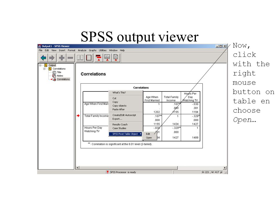 SPSS output viewer Now, click with the right mouse button on table en choose Open…