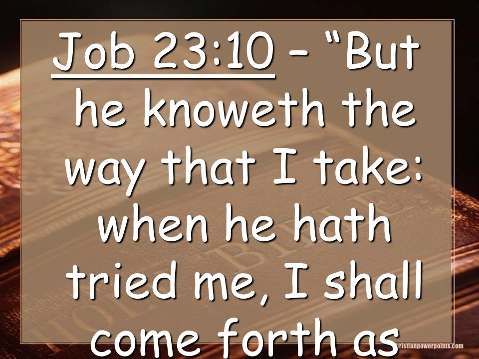 Job 23:10 – But he knoweth the way that I take: when he hath tried me, I shall come forth as gold.
