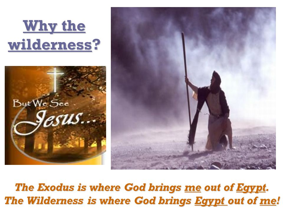 Why the wilderness. The Exodus is where God brings me out of Egypt.