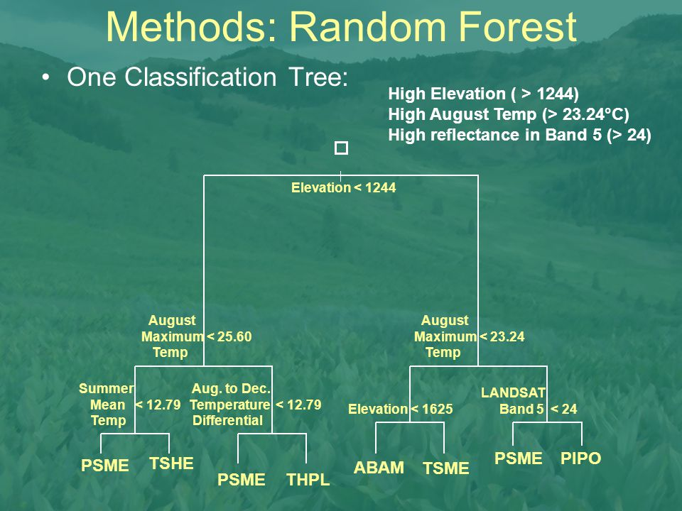 Methods: Random Forest One Classification Tree: Elevation < 1244 August Maximum < 23.24 Temp August Maximum < 25.60 Temp Summer Mean < 12.79 Temp Aug.