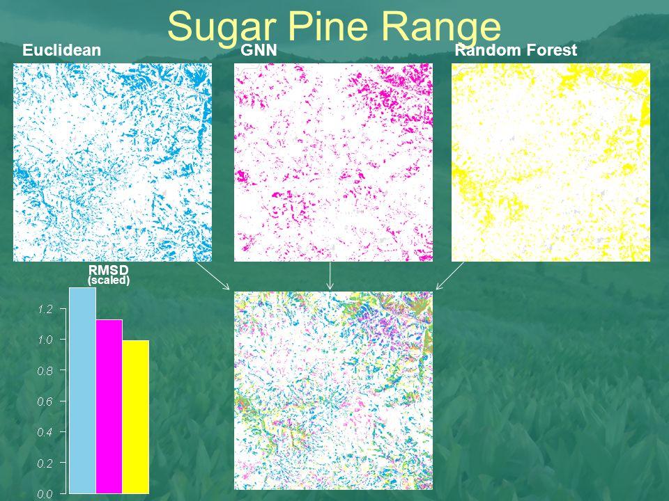 Sugar Pine Range Euclidean GNN Random Forest (scaled)