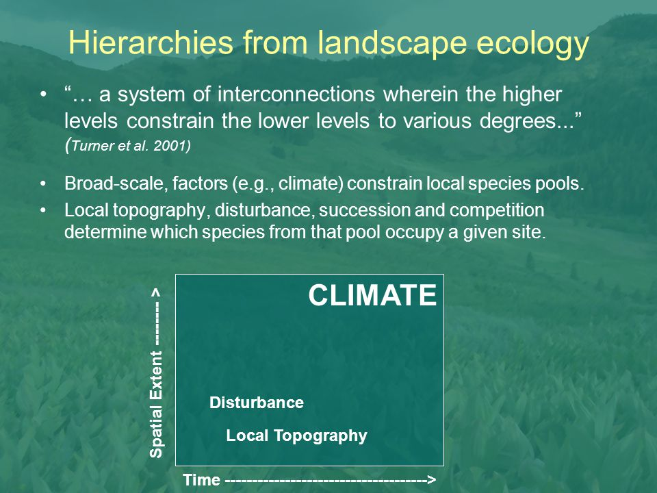 """Hierarchies from landscape ecology """"… a system of interconnections wherein the higher levels constrain the lower levels to various degrees..."""" ( Turne"""