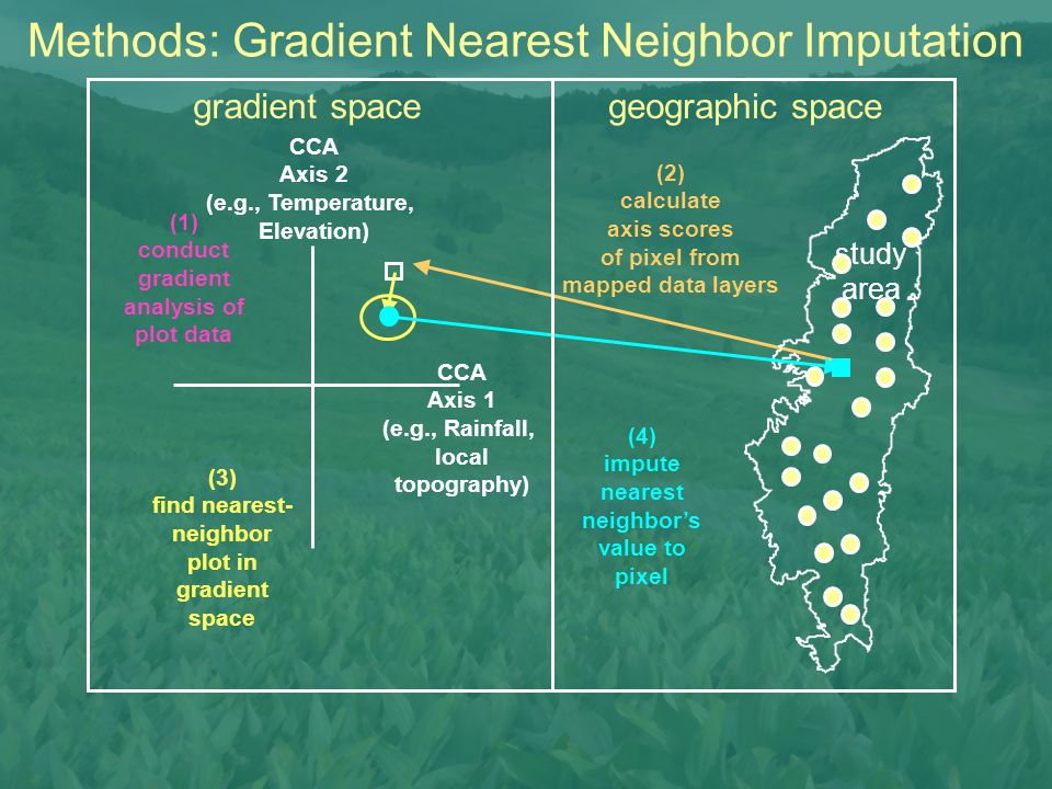 (2) calculate axis scores of pixel from mapped data layers study area (3) find nearest- neighbor plot in gradient space (4) impute nearest neighbor's