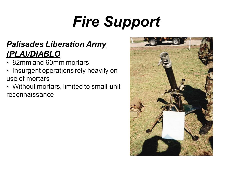 Fire Support Palisades Liberation Army (PLA)/DIABLO 82mm and 60mm mortars Insurgent operations rely heavily on use of mortars Without mortars, limited to small-unit reconnaissance