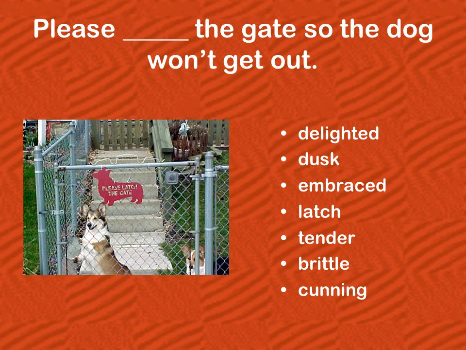 Please _____ the gate so the dog won't get out. delighted dusk embraced latch tender brittle cunning