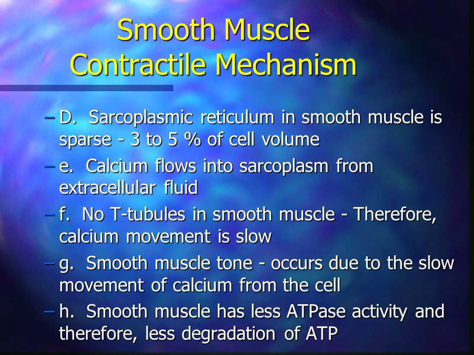 Smooth Muscle Contractile Mechanism –D. Sarcoplasmic reticulum in smooth muscle is sparse - 3 to 5 % of cell volume –e. Calcium flows into sarcoplasm