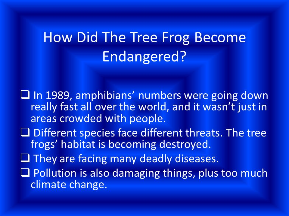 What Steps Are Being Taken In Order To Save The Tree Frog From Becoming Extinct.