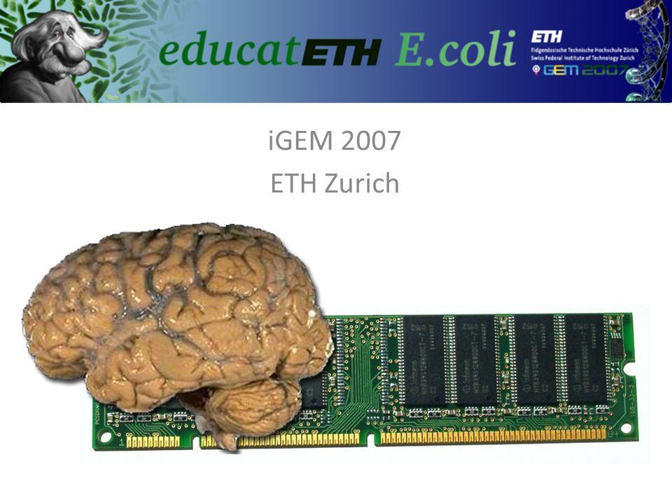 iGEM 2007 ETH Zurich 04.06.2007