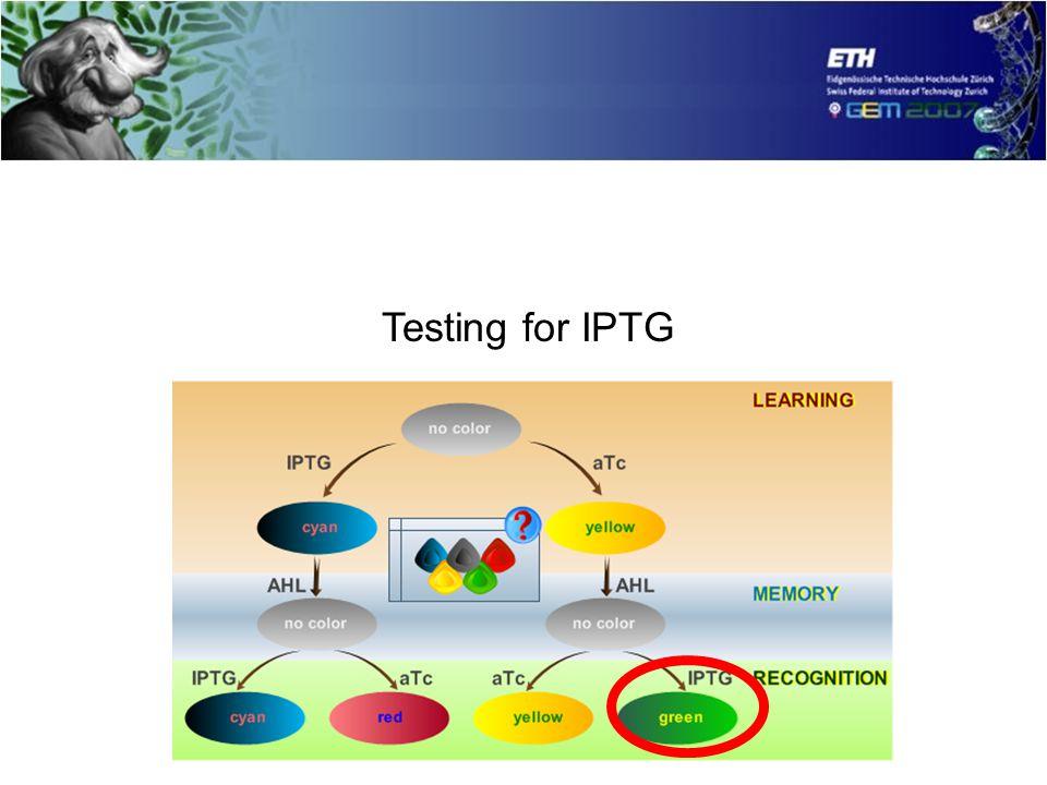 Testing for IPTG