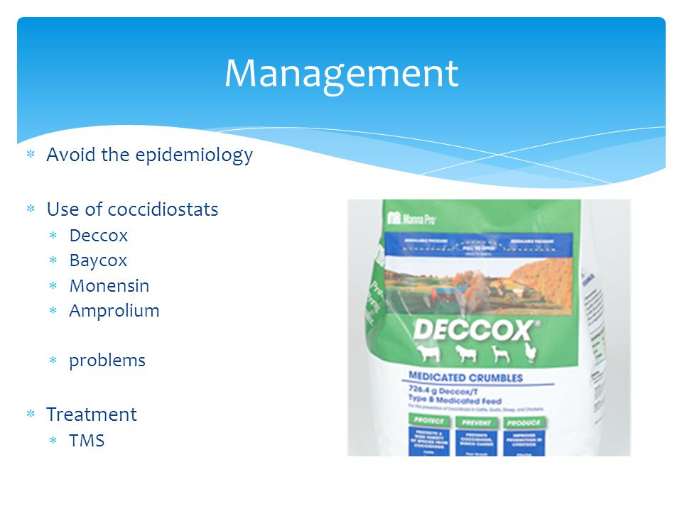 Management  Avoid the epidemiology  Use of coccidiostats  Deccox  Baycox  Monensin  Amprolium  problems  Treatment  TMS