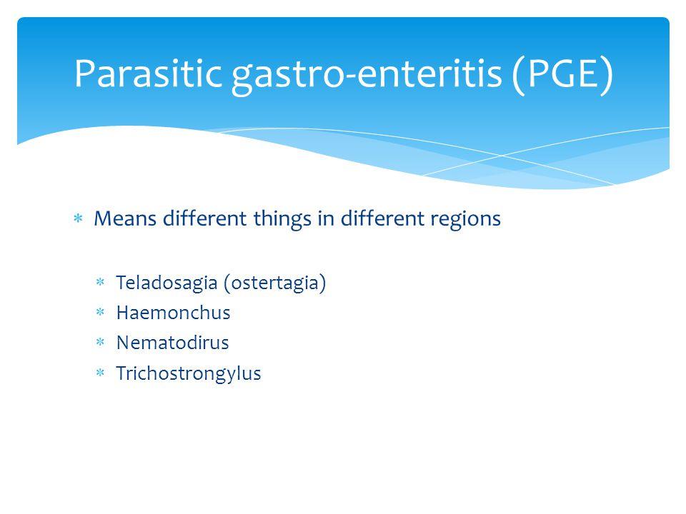  Means different things in different regions  Teladosagia (ostertagia)  Haemonchus  Nematodirus  Trichostrongylus Parasitic gastro-enteritis (PGE)