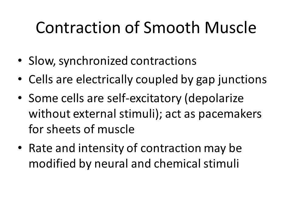 Contraction of Smooth Muscle Slow, synchronized contractions Cells are electrically coupled by gap junctions Some cells are self-excitatory (depolarize without external stimuli); act as pacemakers for sheets of muscle Rate and intensity of contraction may be modified by neural and chemical stimuli