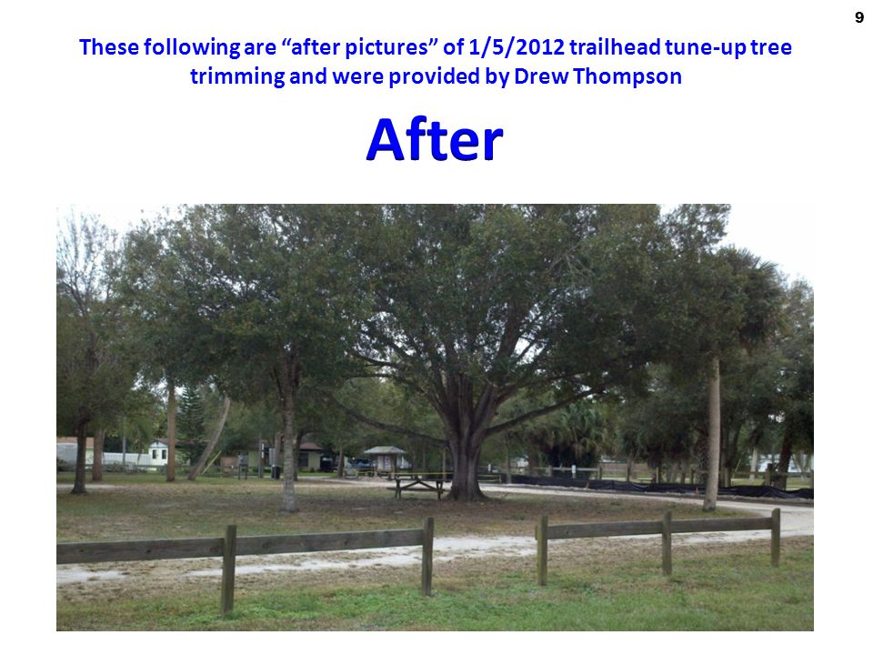 These following are after pictures of 1/5/2012 trailhead tune-up tree trimming and were provided by Drew Thompson 9