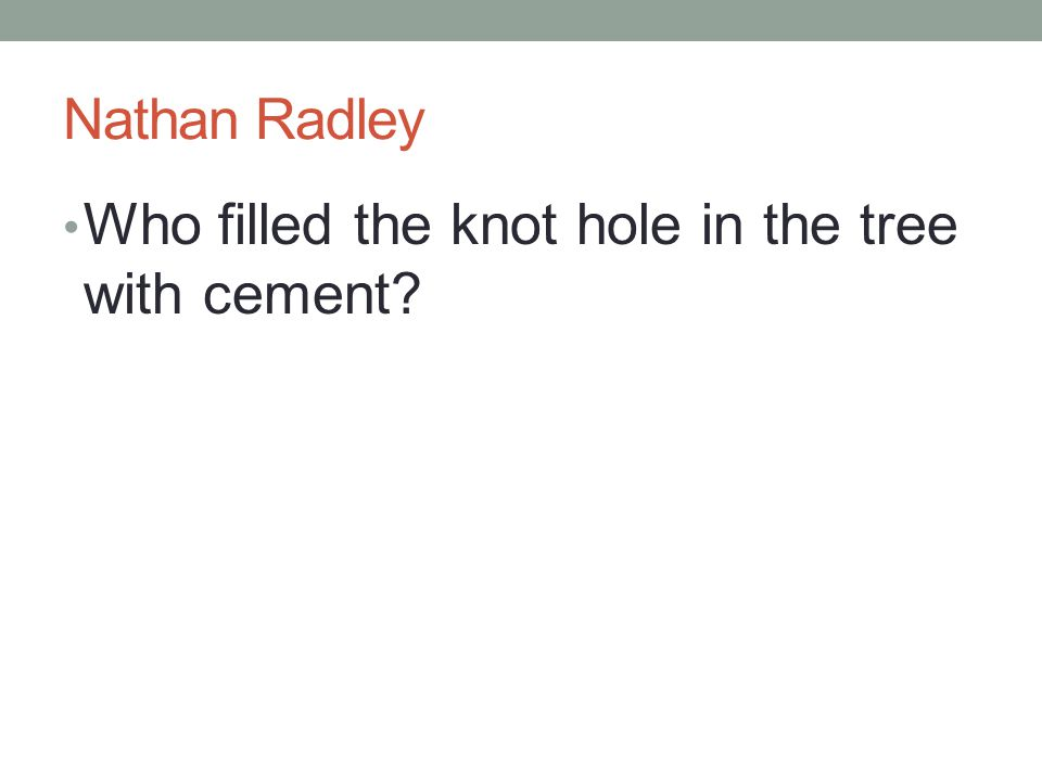 Nathan Radley Who filled the knot hole in the tree with cement?
