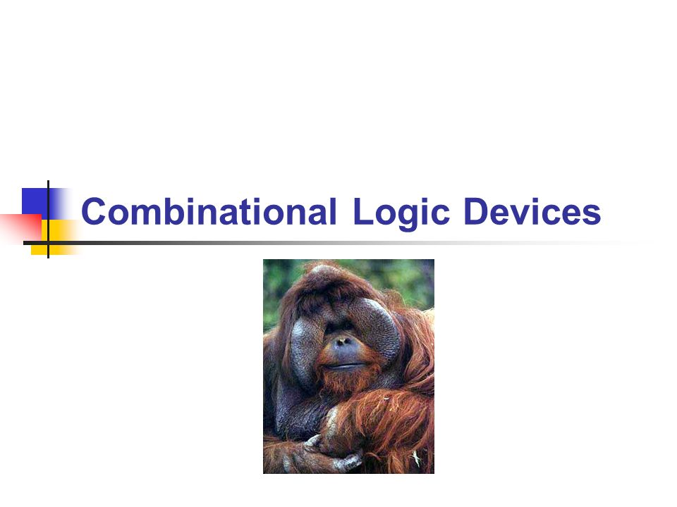 Combinational Logic Devices