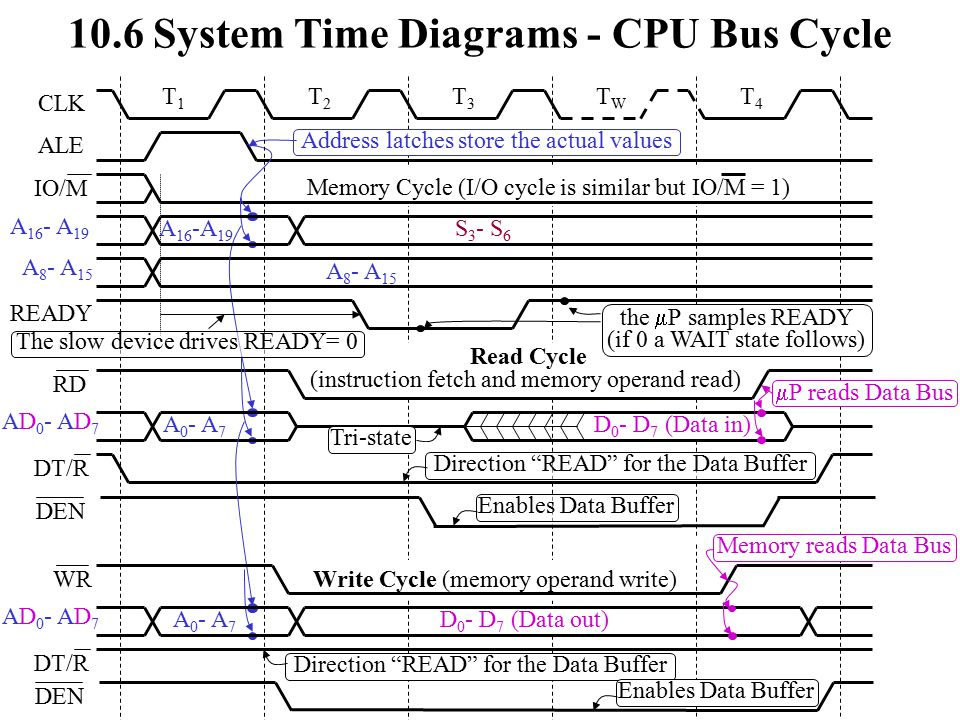 10.6 System Time Diagrams - CPU Bus Cycle T2T2 T3T3 TWTW T4T4 Read Cycle (instruction fetch and memory operand read) A 8 - A 15 Address latches store