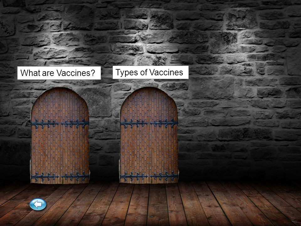 What are Vaccines Types of Vaccines