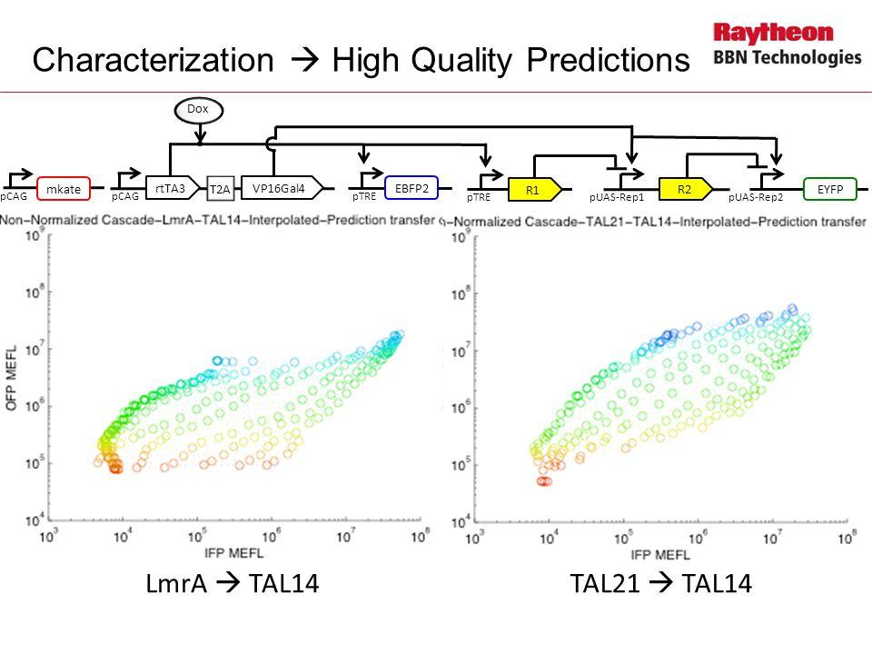 Characterization  High Quality Predictions LmrA  TAL14TAL21  TAL14 pCAG Dox T2A rtTA3VP16Gal4 pTRE EBFP2 pTRE R1 pUAS-Rep1pUAS-Rep2 EYFP R2 pCAG mkate pCAG