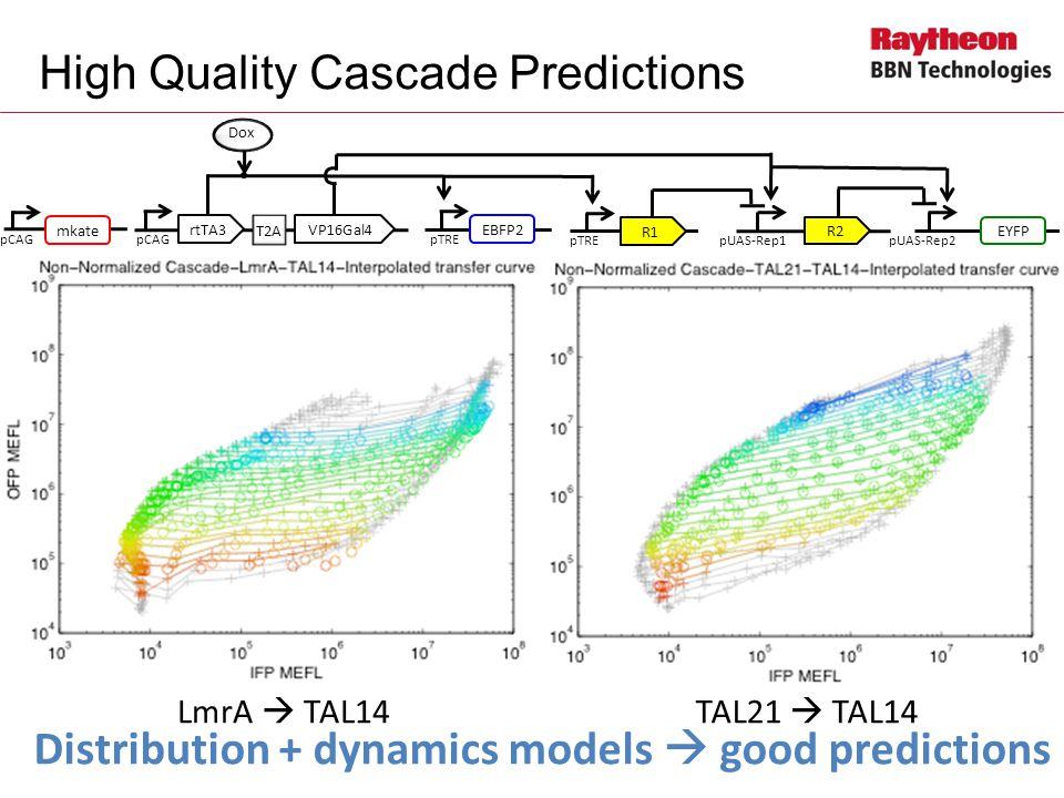 High Quality Cascade Predictions LmrA  TAL14TAL21  TAL14 Distribution + dynamics models  good predictions pCAG Dox T2A rtTA3VP16Gal4 pTRE EBFP2 pTRE R1 pUAS-Rep1pUAS-Rep2 EYFP R2 pCAG mkate pCAG