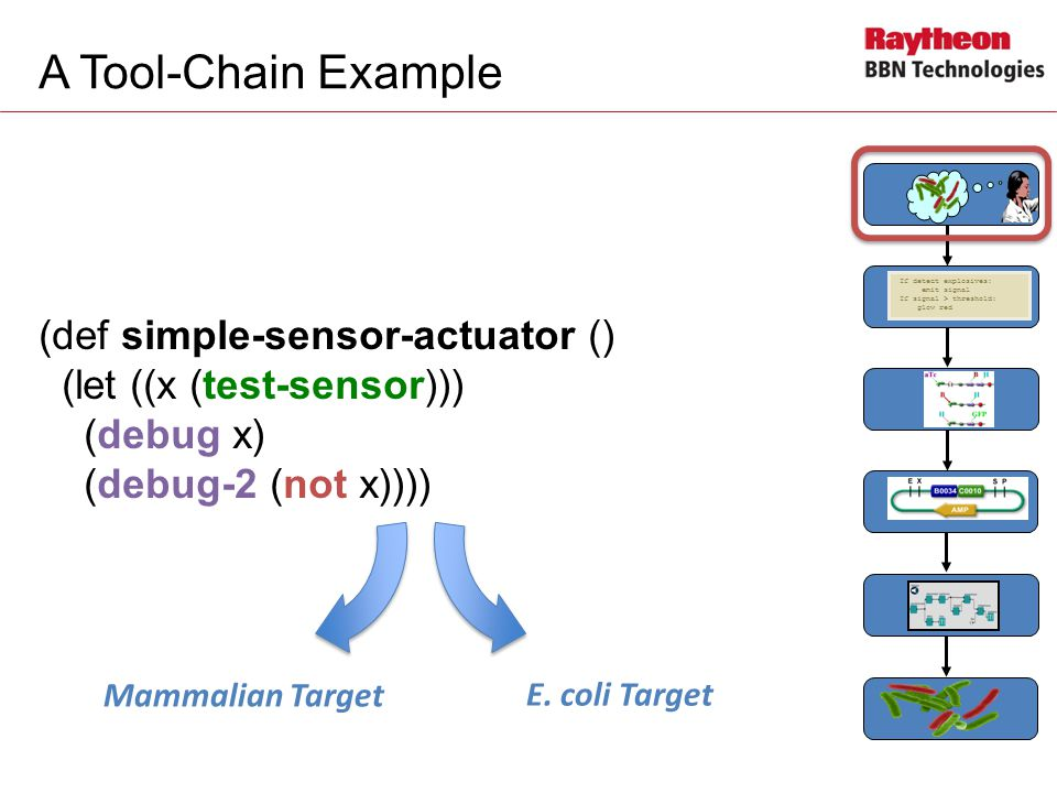 A Tool-Chain Example (def simple-sensor-actuator () (let ((x (test-sensor))) (debug x) (debug-2 (not x)))) If detect explosives: emit signal If signal > threshold: glow red Mammalian Target E.