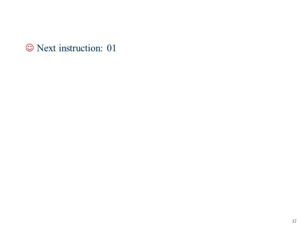 12 JNext instruction: 01