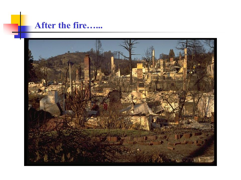 After the fire…...
