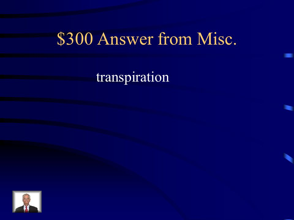 $300 Question from Misc.