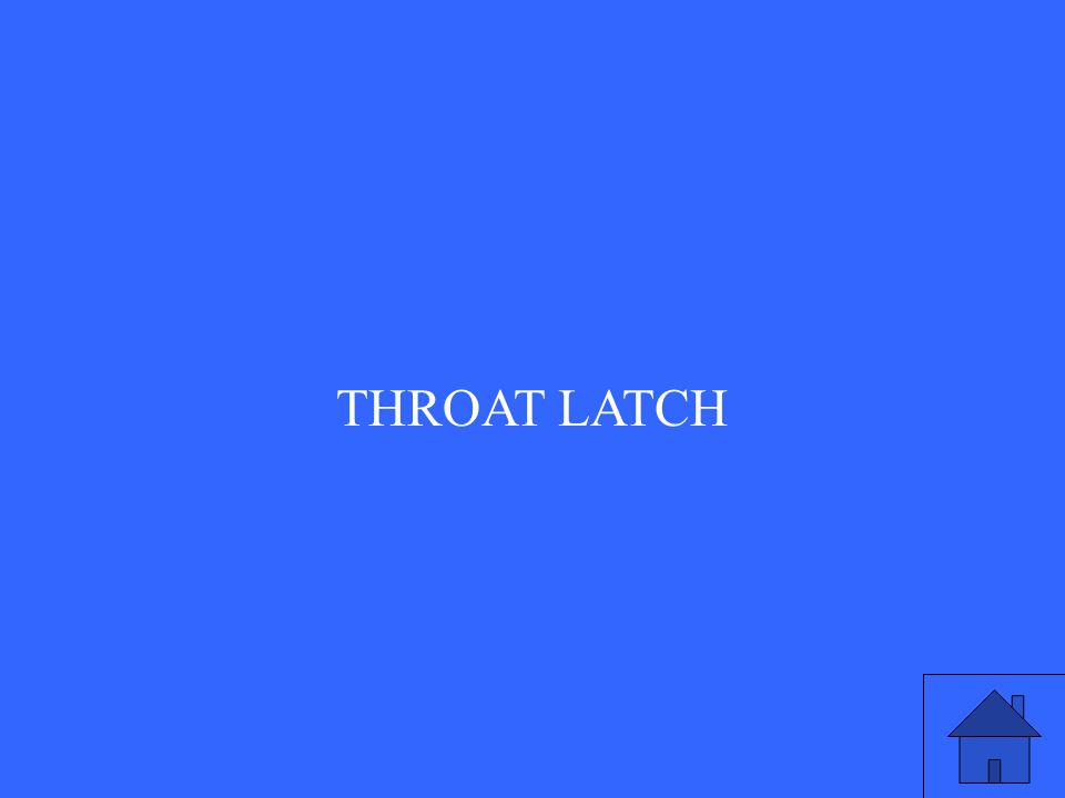 THROAT LATCH
