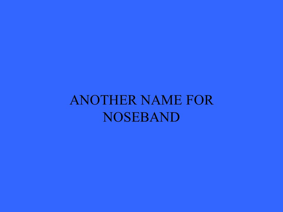ANOTHER NAME FOR NOSEBAND