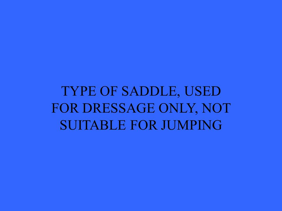 TYPE OF SADDLE, USED FOR DRESSAGE ONLY, NOT SUITABLE FOR JUMPING