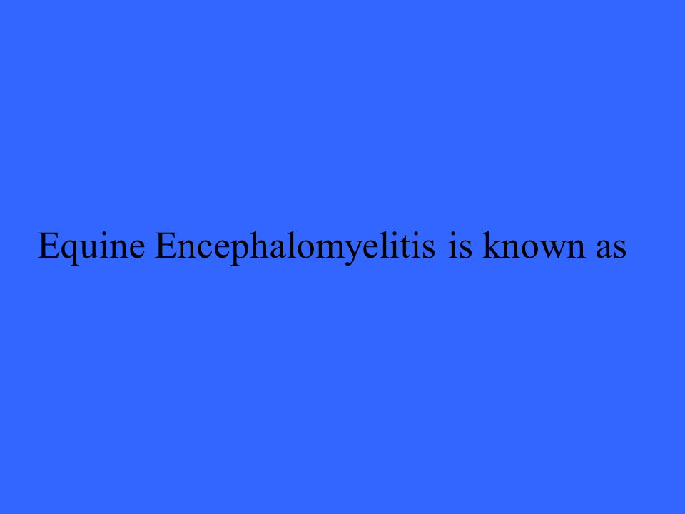 Equine Encephalomyelitis is known as