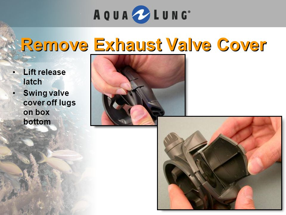 Remove Exhaust Valve Cover Lift release latch Swing valve cover off lugs on box bottom