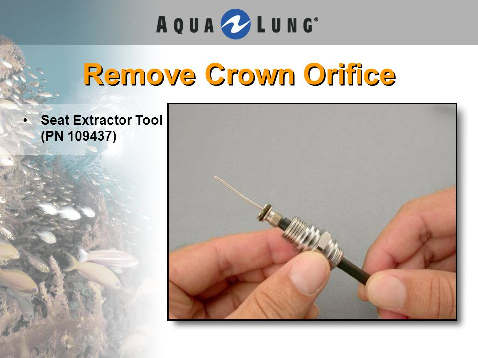 Remove Crown Orifice Seat Extractor Tool (PN 109437)
