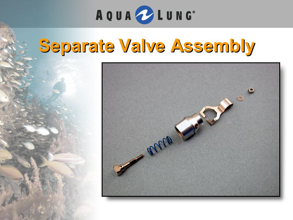 Separate Valve Assembly