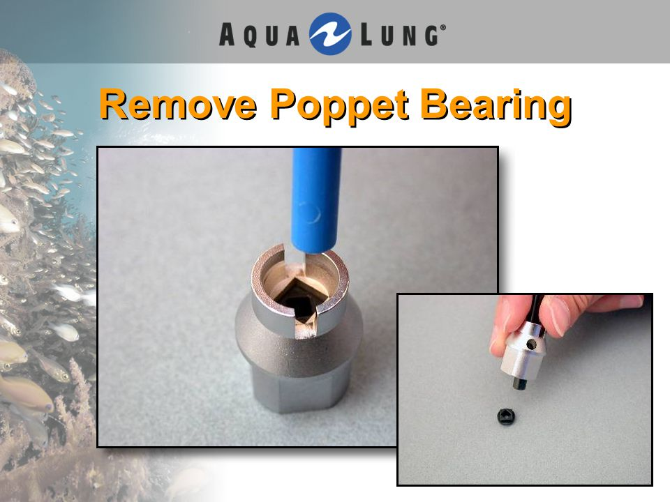 Remove Poppet Bearing