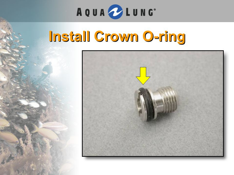 Install Crown O-ring