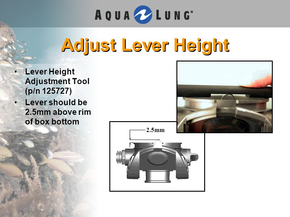Adjust Lever Height Lever Height Adjustment Tool (p/n 125727) Lever should be 2.5mm above rim of box bottom 2.5mm